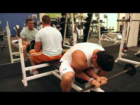 forearm building exercises