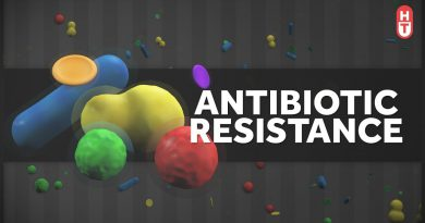 Antibiotic Resistance: What Can You Do?