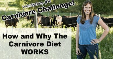 How Does the Carnivore Diet Work? (Carnivore Challenge Workshop #4)