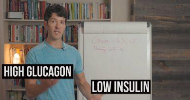 How Fat Burning Works: Beta Oxidation Explained