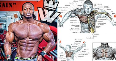 How To Build a Perfect CHEST   BODYBUILDING EXERCISES