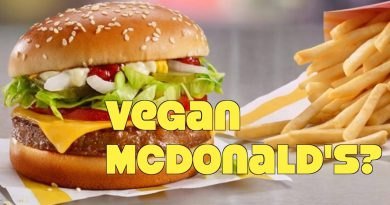 McDonald's New Vegan Burger? Win or Fail?