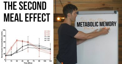Metabolic Memory: Cyclical Keto Dieters & Carb Cyclers Take Note
