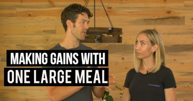 OMAD VS Multiple Meals & Protein Synthesis {study review}