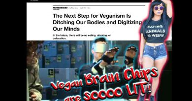 The VEGAN DIET and the CYBORG FUTURE are SO LIT  |  VICE response