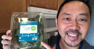 """""""How To Make A Low Carb Green Smoothie"""" with Dr. V"""