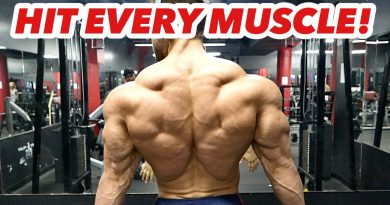 BEST BACK WORKOUT EVER! Maximum Results