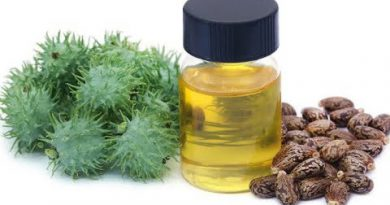 Castor Oil Remedy For 24 Diseases: Highly Effective Against Allergies And Back Pain !