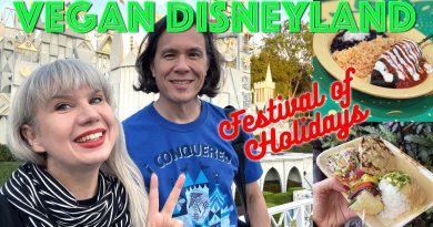 Disneyland 'Festival of Holidays' Fun Vegan Food, Rides, Parades + Music