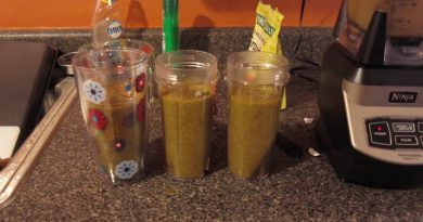 JJ Smith 10 Day Green Smoothie Cleanse   Day 1-2