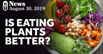 New Research On Plant-Based Diets and Mortality