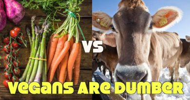 Study: Vegans Are Brain Deficient!? Meat Biz BS Exposed!
