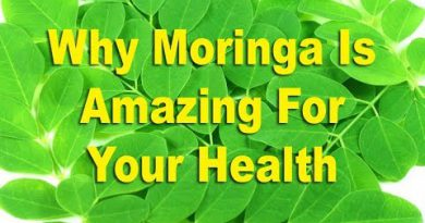Top 20 Reasons Why Moringa Is Amazing For Your Health