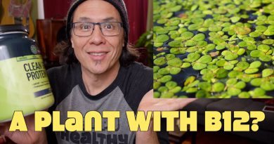 Vitamin B12 Discovered In Duckweed Plant!