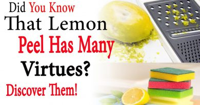 Did you know that lemon peel has many virtues Discover them | Natural Health