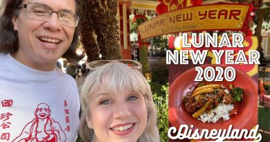 Disney Lunar New Year: Vegan Asian Food, Mulan, & Dragon Dance