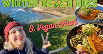 VLOG: Winter Beach Hike & New Vegan Spot in San Pedro