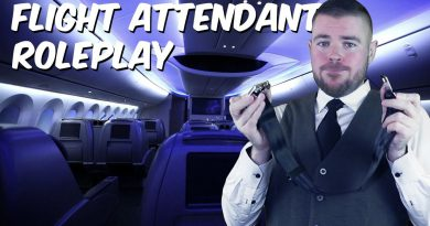 ASMR Male Flight Attendant Roleplay ✈️ Helps With Flying Anxiety
