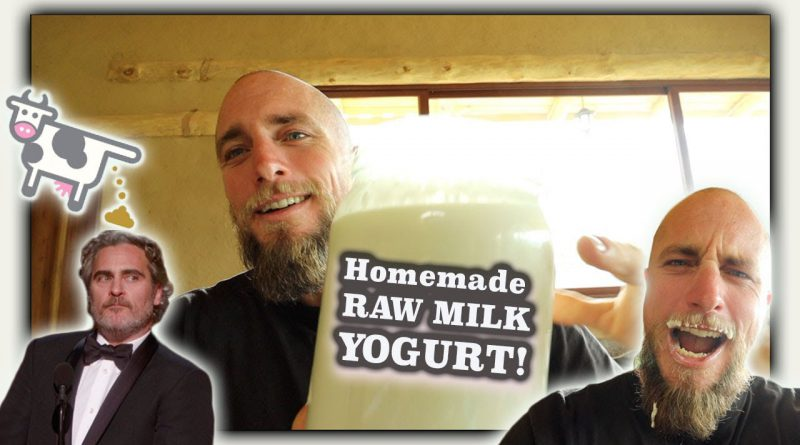 Making Raw Milk Yogurt | what we do with all the milk from our family cow