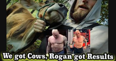 We got some Cows Joe Rogan got crazy CARNIVORE diet results