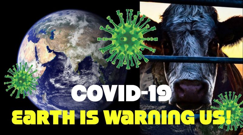 Covid-19 Is Nature Sending A Warning About Animal Agriculture: United Nations Chief