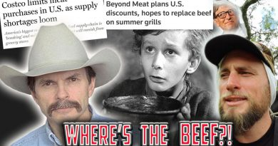 BEEF shortages - what can we do? | Meat Market MANIPULATION | Bill Bullard of R-Calf