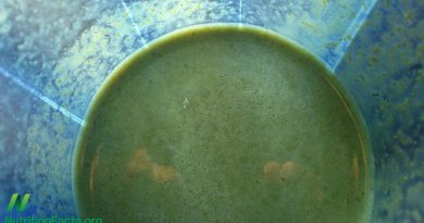 The Downside of Green Smoothies - SHOCKING