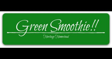 Green Smoothie Recipe - Wahls Protocol / HFLC / Nutritional Ketosis