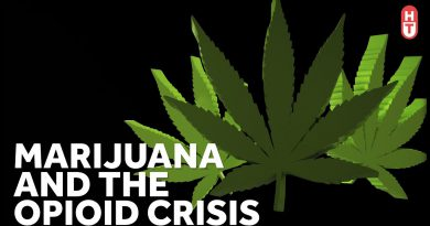 Can Marijuana Help with Opioid Addiction?