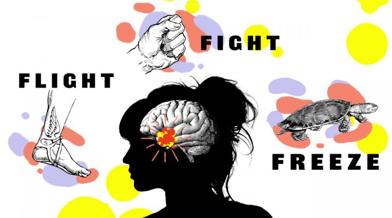 Fight Flight Freeze –Anxiety Explained For Teens